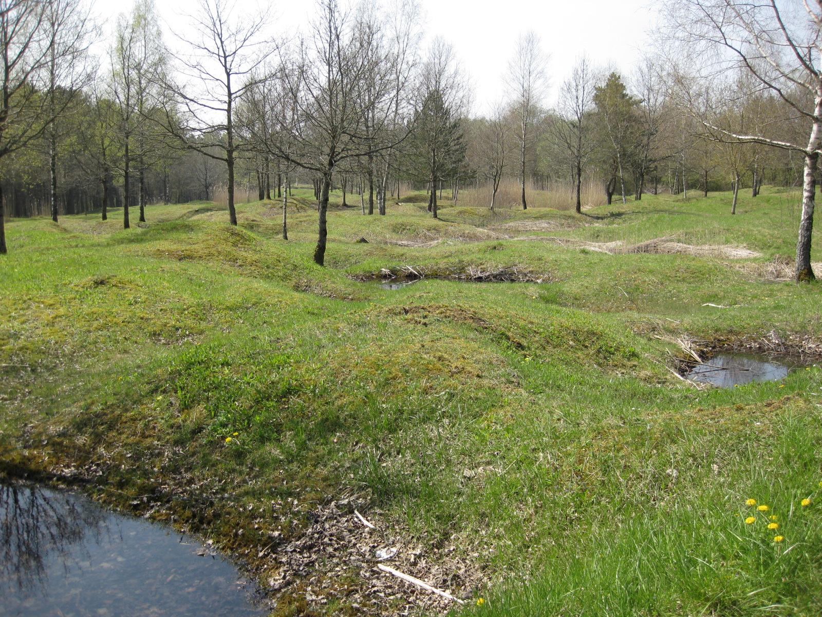 Verdun battlefield