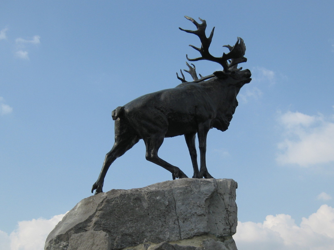 caribou - emblem of the Newfoundland Regiment