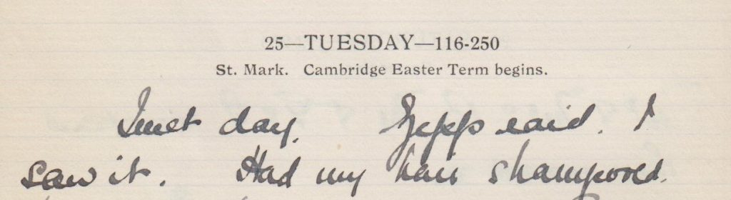 "A diary entry from 1916 shows life went on despite the raids: ""Quiet day. Zepp raid. I saw it. Had my hair shampooed""."